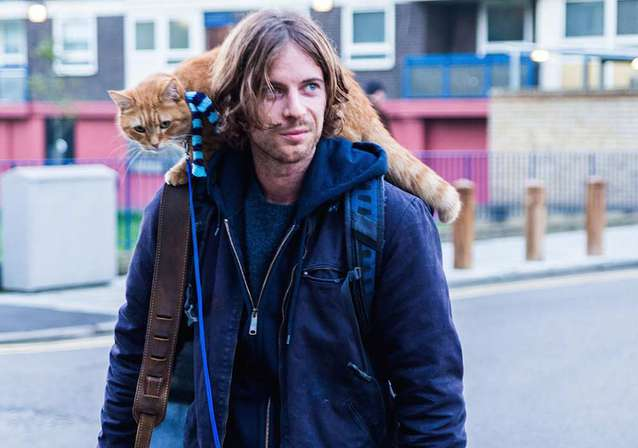 A STREET CAT NAMED BOB - Out This Week